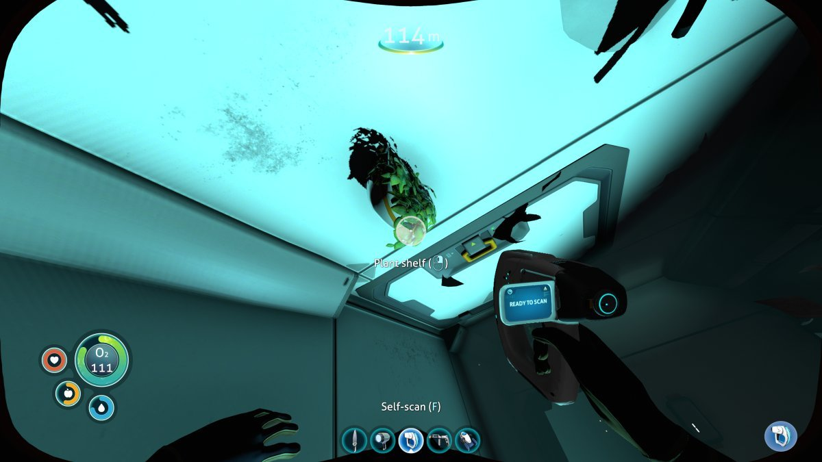 Subnautica Lifepod 13 And The Mushroom Forest Wreck Craftable Worlds Today we continue building our glass observation base in the void, but it seems as thought the ghost leviathans are not happy with me being here. mushroom forest wreck